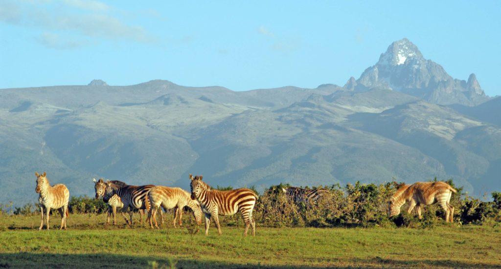 10 Days Kenya Safari Spectacular