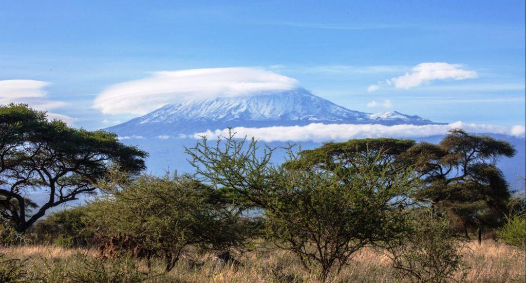 Raydoll Kilimanjaro from Amboseli National Park Kenya